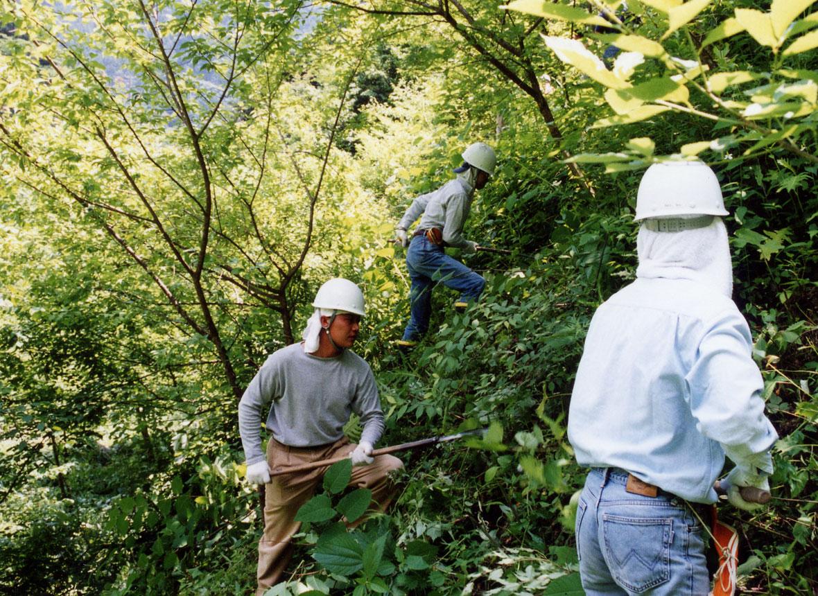 森林整備体験イベント