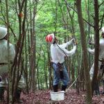 穂の国みんなの森活動