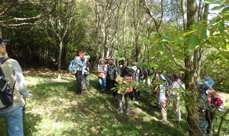 森に親しむ事業_自然観察会
